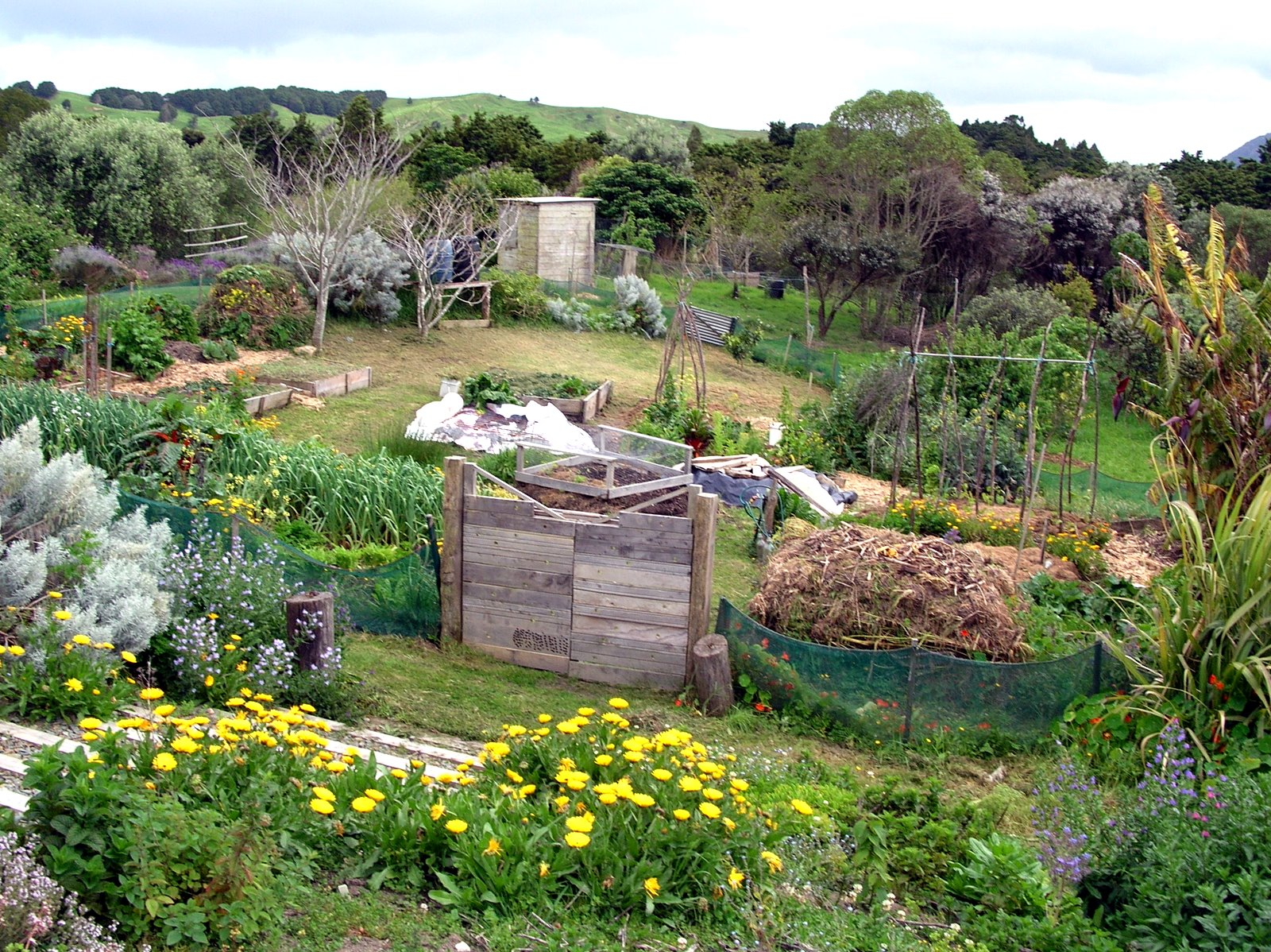 permaculture lower zones - Jardin Permaculture