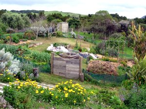 permaculture lower zones