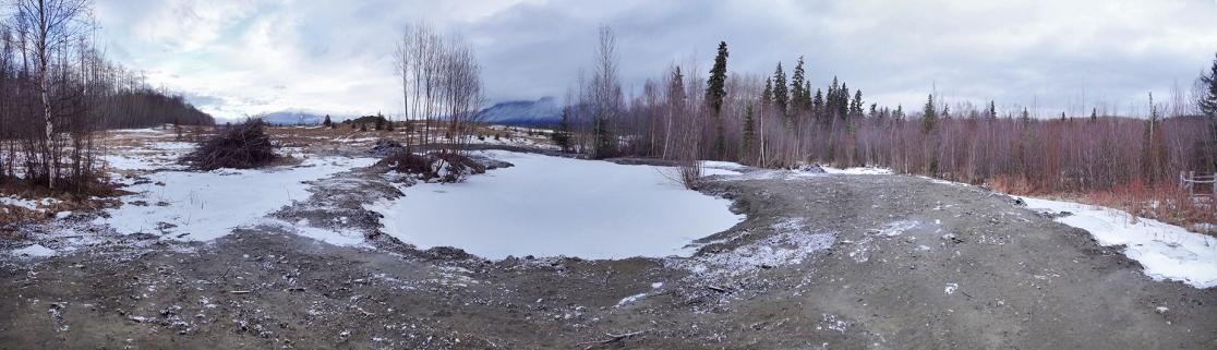 Pond_Panorama1